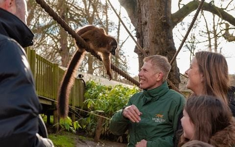 Travel on Trial: The day we got to talk to the animals on a VIP experience at Woburn Safari Park