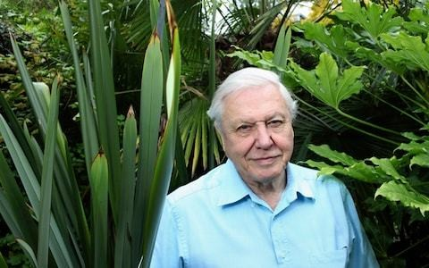 Sir David Attenborough blasts EU over 'silly' interference in UK affairs, saying British people are 'fed up'