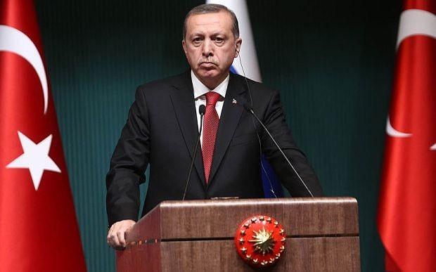 Turkish schoolboy arrested for 'insulting' President Erdogan