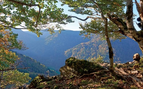 Alsace and the Black Forest: a fairy tale holiday