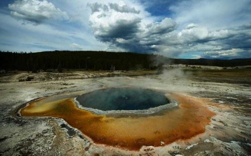Yellowstone National Park: Man dies after falling into hot spring having wandered off trail