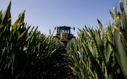 Uncertainty over the future of farming subsidies hits land values