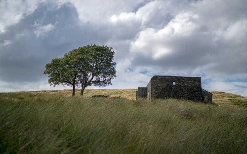 'She out-darked us': What it's like to walk the moors with Emily Bronte, Yorkshire's most famous goth