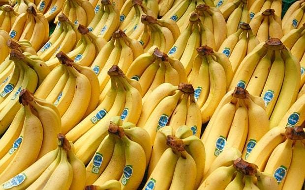 The secret history of bananas, and what it tells us about climate change