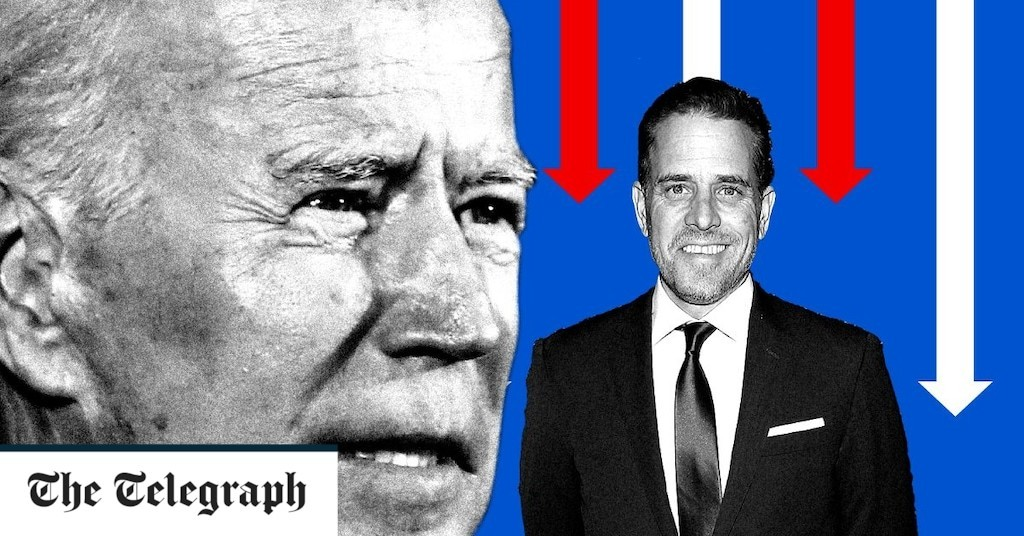 Joe Biden's family tree: how tragedy shaped the US president-elect