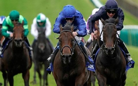 The new Frankel? Pinatubo shows another side as he defies soft ground to make it six from six with Newmarket win