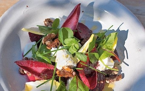 Beetroot salad with goat's cheese, walnuts and rapeseed oil dressing recipe