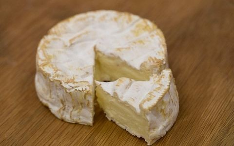 Cheese war in France as traditional camembert producers battle with industrial rivals over prestigious label