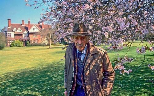 How one Englishman saved Japan's cherry trees