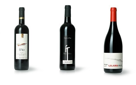 The best wines to take outside this summer