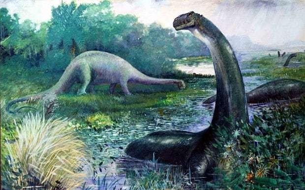 Were dinosaurs tripping on hallucinogens?