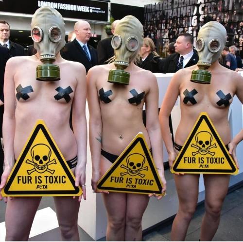 Fur protesters hit London Fashion Week