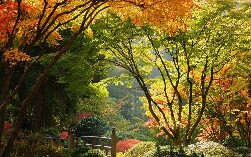 10 beautiful gardens you must visit in your lifetime