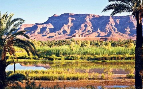 North Africa: readers' tips, recommendations and travel advice