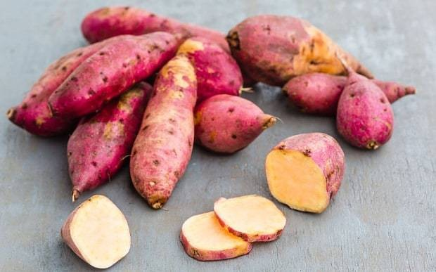 Root vegetables: easy to grow and delicious