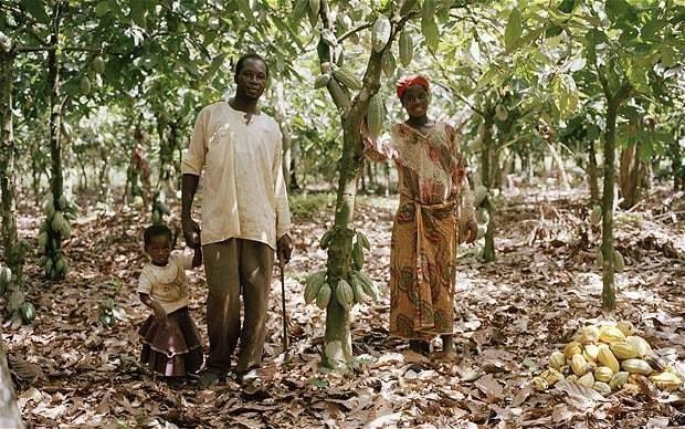 Ebola epidemic to threaten the world's chocolate supplies