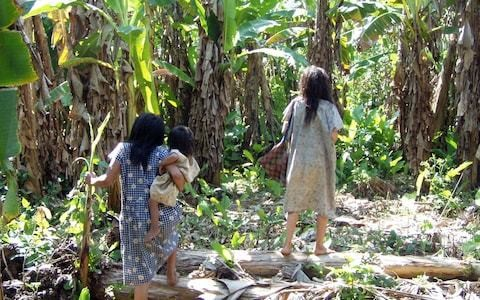South American tribe found to have the healthiest hearts ever studied