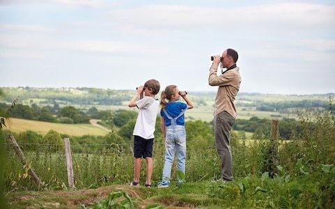 Birdwatching has been my lifetime's passion. How do I pass it on to my children?