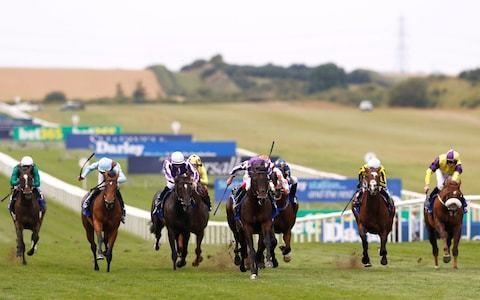 Marlborough racing tips for Thursday, September 26
