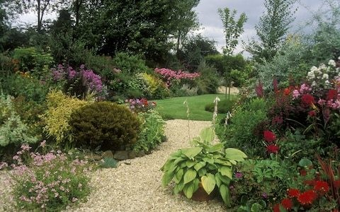 Gravel is back in fashion, says plant expert, as gardeners try to save water