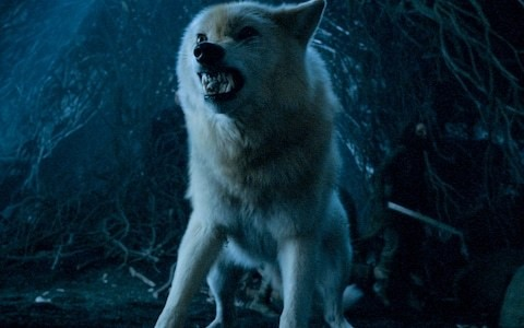 Direwolves vs Zombie Dragon: the battle scene cut from Game of Thrones season eight