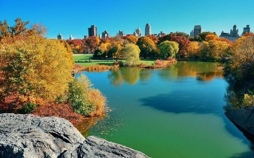 New York's Central Park: things you didn't know