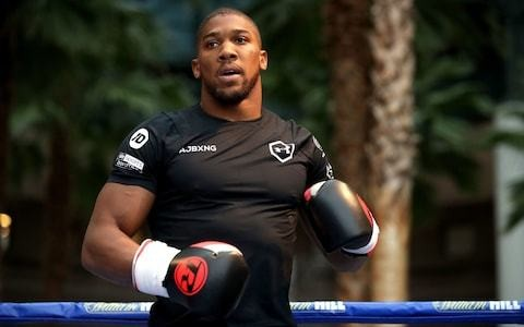 Anthony Joshua enlists help of Navy Seals and sports psychologist ahead of Andy Ruiz fight