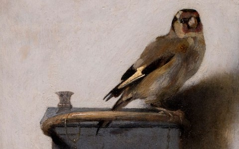 The Goldfinch: how one little overlooked 17th-century painting became a global phenomenon