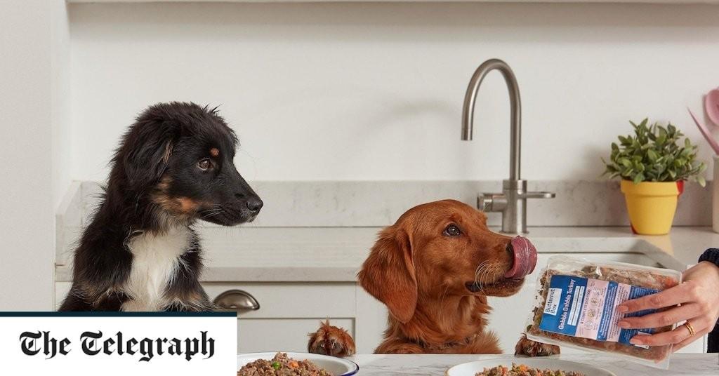 Posh dog food firm creates 500 jobs