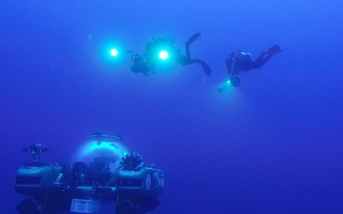 100 species discovered as scientists find new ocean zone