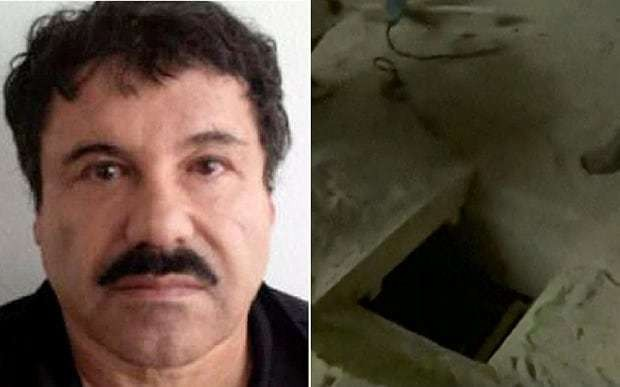 El Chapo nearly caught as he tries to retrieve daughters' pet monkey