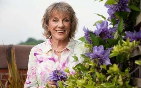 Dame Esther Rantzen says Skype won't combat loneliness of elderly like a hug and cuppa