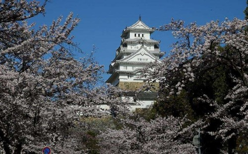 The beauty of Himeji Castle