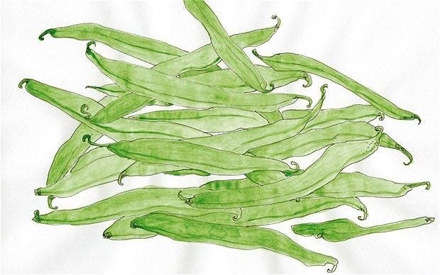 The pleasure of green beans
