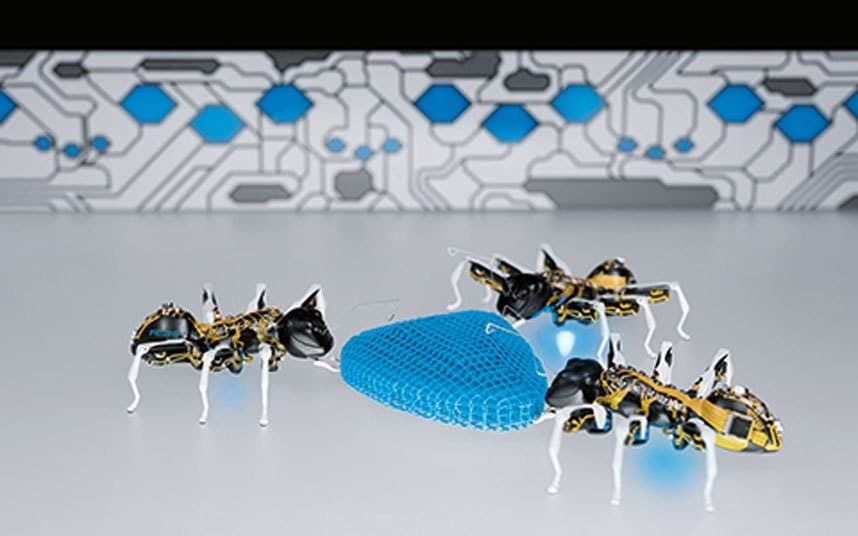 Will factories of the future be run by robotic ants?