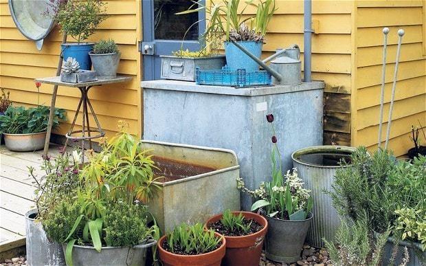 How I made a garden for all seasons