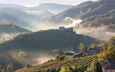 Italy's prosecco boom is leading to dramatic soil erosion, scientific report claims