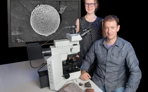 Fossilised stardust could hold secret to origins of life on Earth...and beyond