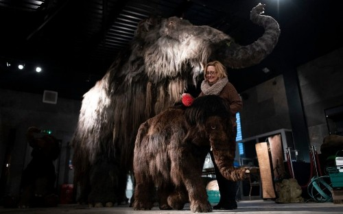 Japanese scientists take 'significant step' towards bringing the woolly mammoth back to life