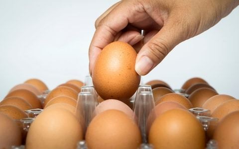 Eating as few as three eggs a week raises risk of heart disease, study suggests
