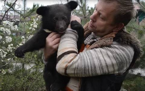 Private zoo owner in Crimea pleads for public to take 30 of his bears so he won't have to euthanise them