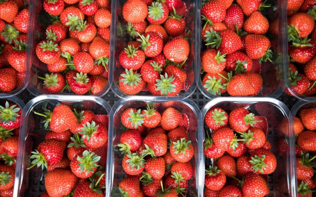 Strawberries set for bumper summer as record spring helps produce one of biggest crops ever seen