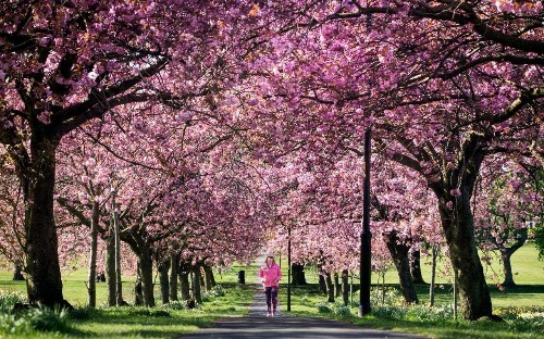 Spring Equinox 2018: The science behind the changing seasons