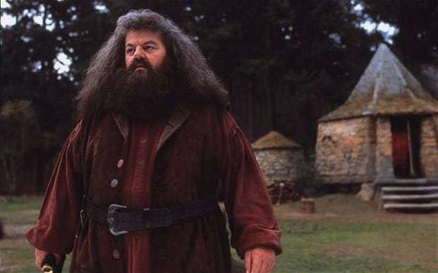 Harry Potter actor Robbie Coltrane rushed to hospital after suffering 'severe flu symptoms' on flight
