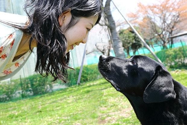 Humans love pet dogs as much as their children and the feeling is mutual