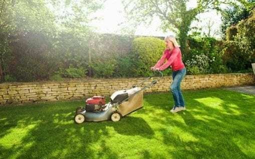 Gardeners must prune roses, plant potatoes and mow the lawn in short spring window, experts warn