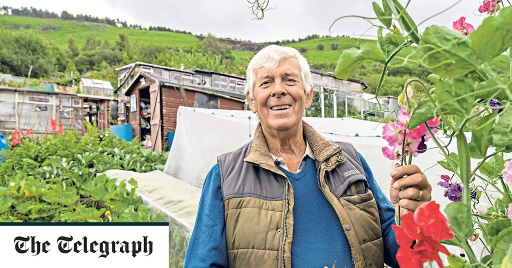 On the plot with Terry Walton: top tips for veg growers