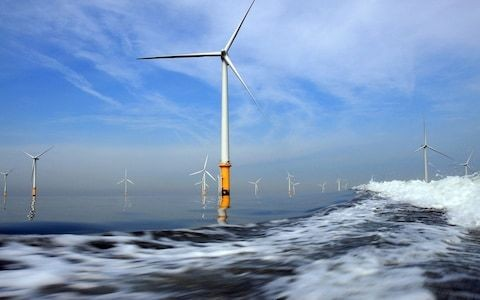 Renewable energy on course to be 2020's most popular investment – here's how to buy