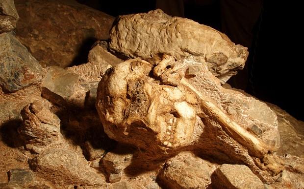 Meet Little Foot - the 3.7 million-year-old human ancestor