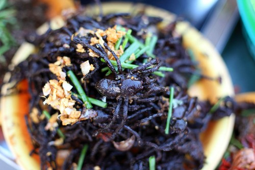 What it's like to eat tarantula (and other weird foods of the world)